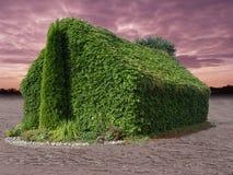 effektväxthus Royaltyfri Foto
