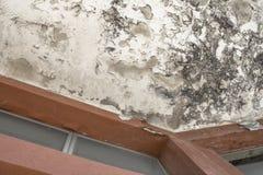 Effet d'humidité sur un vieux mur image stock