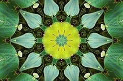 Effet de kaléidoscope Photographie stock libre de droits