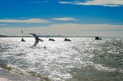 Effet surexposé avec des surfers de cerf-volant appréciant la mer image libre de droits