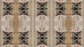 Effet Trippy de kaléidoscope avec des moissonneuses de cartel se transformant en logo, 4k banque de vidéos
