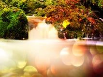 Effetto astratto Le rapide sulla piccola torrente montano fra il basalto muscoso oscilla Onde di acqua vaghe Fotografia Stock