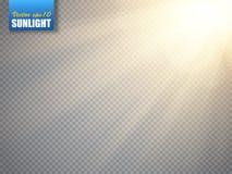 Effetto della luce del chiarore della lente Raggi di Sun con i fasci isolati Vettore Fotografie Stock