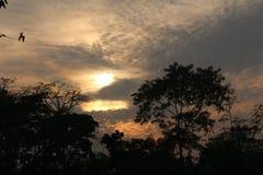 Effetto meraviglioso del sole su un'immagine naturale Fotografia Stock Libera da Diritti