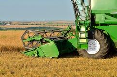 Effettuare il raccolto del grano Fotografia Stock