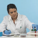 Efficient lab worker on blue background Royalty Free Stock Images
