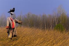 Effigy in the spring field in the fall of not removed rye royalty free stock images