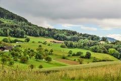 Effingen krajobraz Obrazy Royalty Free