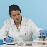 Effizienter Laborant auf blauem Hintergrund Lizenzfreie Stockbilder