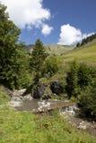 Effluisca nelle montagne svizzere durante l'estate Fotografia Stock Libera da Diritti