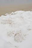 Efter den första snön som ner faller Royaltyfria Foton