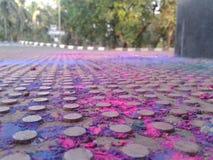 Efter den Holi festivalen royaltyfria foton