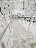 Efter ett enormt tungt snöfall royaltyfri bild