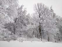 Efter ett enormt tungt snöfall arkivfoto