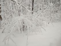 Efter ett enormt tungt snöfall fotografering för bildbyråer