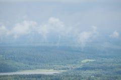 Efter regna Fotografering för Bildbyråer