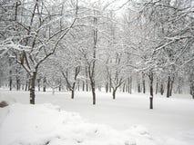 Efter snowfall arkivfoto