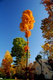 Eftermiddag i Jamestown, NC Royaltyfri Fotografi