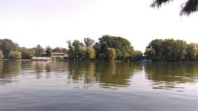 Eftermiddag i parkera Arkivfoton