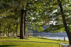Eftermiddag på en sjö Royaltyfria Bilder