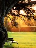 eftermiddaglampa fotografering för bildbyråer