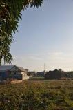 Eftermiddaglandskap i byn Royaltyfri Bild