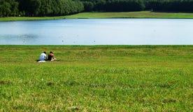 eftermiddagpark Arkivbild