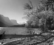 EftermiddagShoreline i svart & vit Royaltyfri Foto