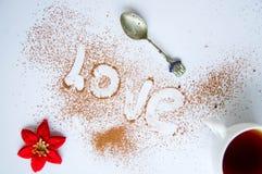 Efterrätt - chokladkaka Royaltyfria Foton