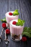 Efterrätt med granola, yoghurt och hallonet royaltyfri foto