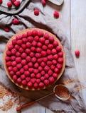 EFTERRÄTT MED HALLON Slut för ostkaka för chokladkaka upp, dekorerat med kakao och hallon ovanför sikt royaltyfri foto