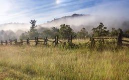 Eftersatt kluvet stångstaket Foggy Field royaltyfria foton