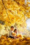 Eftertänksam ungesittin på en inloggning som hösten parkerar Royaltyfri Foto