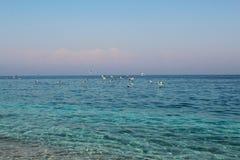 Egeïsch zeegezicht: turkooise blauwe overzees en rotsachtig strand royalty-vrije stock afbeeldingen