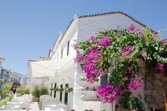 Egeïsche Architectuur Stock Fotografie
