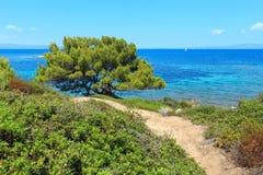 Egeïsche overzeese kust Chalkidiki, Griekenland Royalty-vrije Stock Foto's