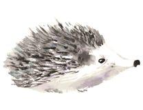 Egel die op witte achtergrond wordt ge?soleerde Waterverf vectorillustratie royalty-vrije illustratie