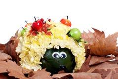 Egel van de kleuren in de droge bladeren op geïsoleerde witte B Royalty-vrije Stock Foto's