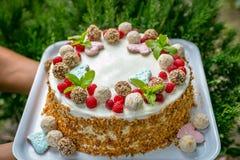 Egentligen handgjord kaka med kräm, candy's, sidor, hjärtor, kokosnötter royaltyfri fotografi