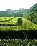Egeskov castle maze. Close up of hedges forming maze in Egeskov castle gardens, Funen island, Denmark Stock Photos
