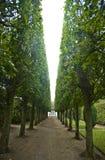 Egeskov Schloss verschönerte Park landschaftlich lizenzfreie stockfotografie