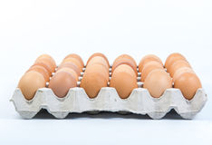 Egg в клети яичка на белой предпосылке Стоковая Фотография