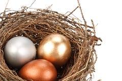 egg золото Стоковые Фотографии RF