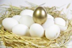 egg золотистое Стоковое фото RF
