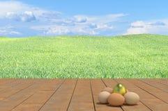 egg золотистое Стоковое Изображение