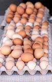 Egg клети коричневых и белых яичек на рынке местных фермеров Стоковые Фотографии RF