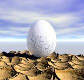egg сперва Стоковое Фото