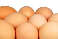 Egg. Macro photo of eggs isolated on white Royalty Free Stock Image