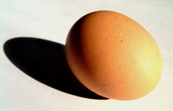 Egg 11 Royalty Free Stock Images
