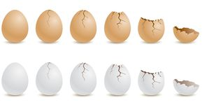 Egg Royalty Free Stock Photography